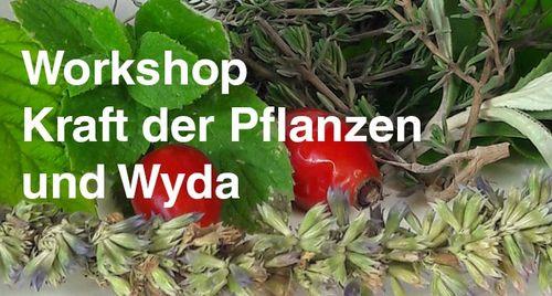 wyda_workshop_web_500px